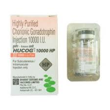 hucog 10000